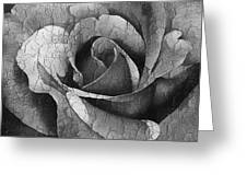 Vintage Cracked Rose Greeting Card