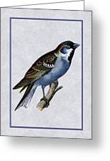 Vintage English Sparrow Vertical Greeting Card