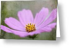 Vintage Flower Greeting Card
