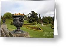 Vintage Flowerpots And Garden View - Powerscourt Garden Greeting Card