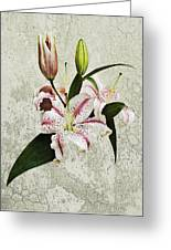 Vintage Flowers Greeting Card by Lesley Rigg