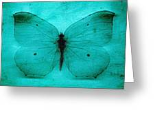 Vintage Grunge Butterfly Greeting Card