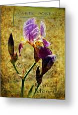 Vintage Iris Greeting Card