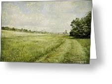Vintage Landscape Greeting Card by Jelena Jovanovic