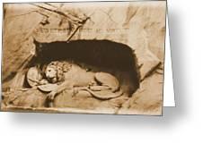 Vintage Lion Of Lucerne Greeting Card