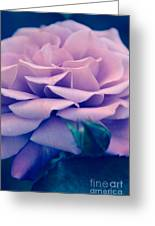 Vintage Petals Greeting Card