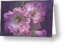 Vintage Pink And White Hollyhocks Greeting Card
