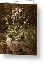 Vintage Planter Greeting Card
