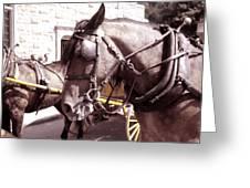 Vintage Ride Greeting Card