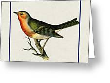 Vintage Robin Square Greeting Card