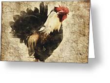 Vintage Rooster Greeting Card