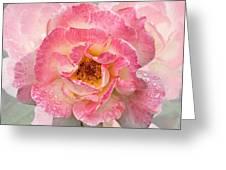 Vintage Rose Square Greeting Card