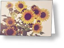 Vintage Sunflowers In The Garden Greeting Card