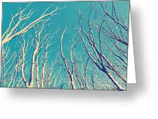 Vintage Trees Greeting Card