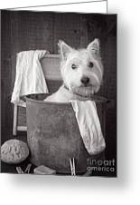Vintage Wash Day Greeting Card