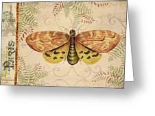 Vintage Wings-paris-c Greeting Card