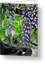 Vintage Wisteria 200 Greeting Card