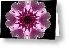 Violet And White Dahlia I Flower Mandala Greeting Card
