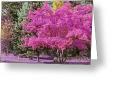 Violet Autumn Greeting Card