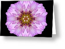 Violet Dahlia II Flower Mandala Greeting Card