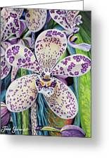 Violet Dotted Orchid Greeting Card