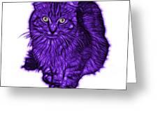 Violet Feral Cat - 9905 Fs Greeting Card