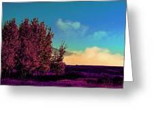 Violet Flats Greeting Card