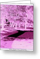 Violet Illusion Greeting Card