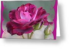 Violet Red Rose Greeting Card