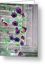 Violet Vine - Photopower 324 Greeting Card