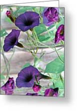 Violet Vine - Photopower 326 Greeting Card