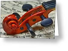 Violin Scroll Up Close Greeting Card