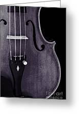 Violin Viola Body Photograph Or Picture In Sepia 3265.01 Greeting Card