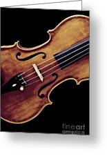 Violin Viola Photograph Strings Bridge In Color 3264.02 Greeting Card