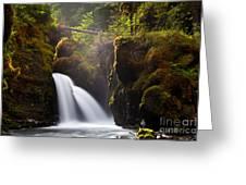Virgin Creek Falls Greeting Card by Chris Heitstuman