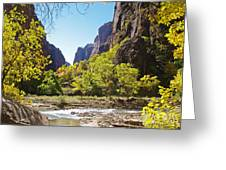 Virgin River In Zion National Park Greeting Card