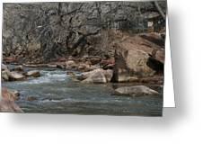 Virgin River Zion Park Greeting Card