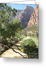 Virgin River Zion Valley Greeting Card