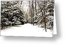 Virgin Snow Greeting Card