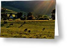 Virginia Countryside Greeting Card