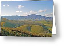 Virginia Mountains  Greeting Card