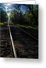 Virginius Island Tracks Greeting Card