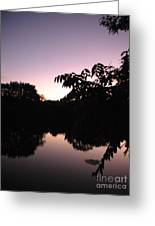 Vision In Purple Greeting Card