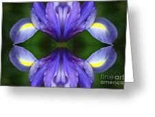 Visionary Meditation Greeting Card