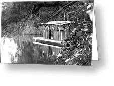 Visit To The Gator Hole Greeting Card