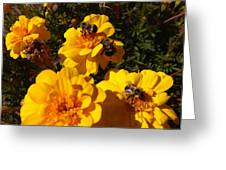 Visiting Bees Greeting Card