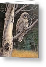 Visitor From The North-great Grey Owl Greeting Card