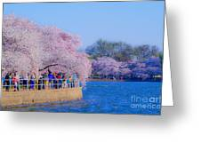 Visitors To The Blooms On The Basin Greeting Card