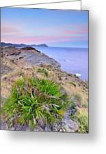 Volcanic Desert At Sunset Greeting Card