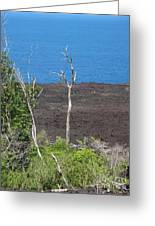 Volcano Rocks - Ile De La Reunion - Reunion Island Greeting Card by Francoise Leandre
